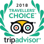 TripAdvisor Traveller's Choice Award Logo