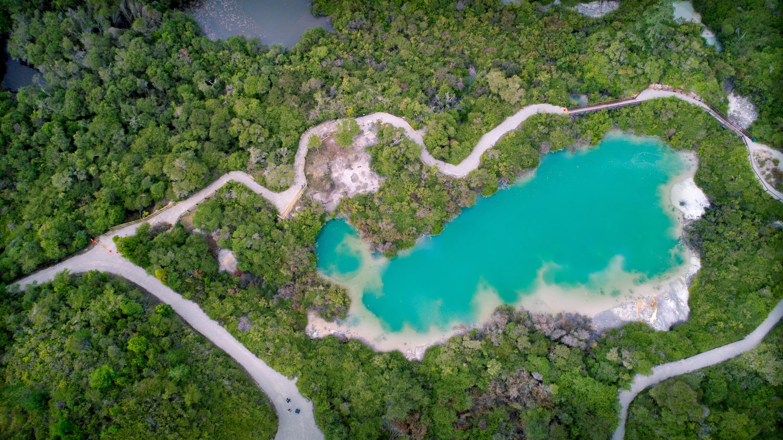 Whakarewarewa Nature Trails