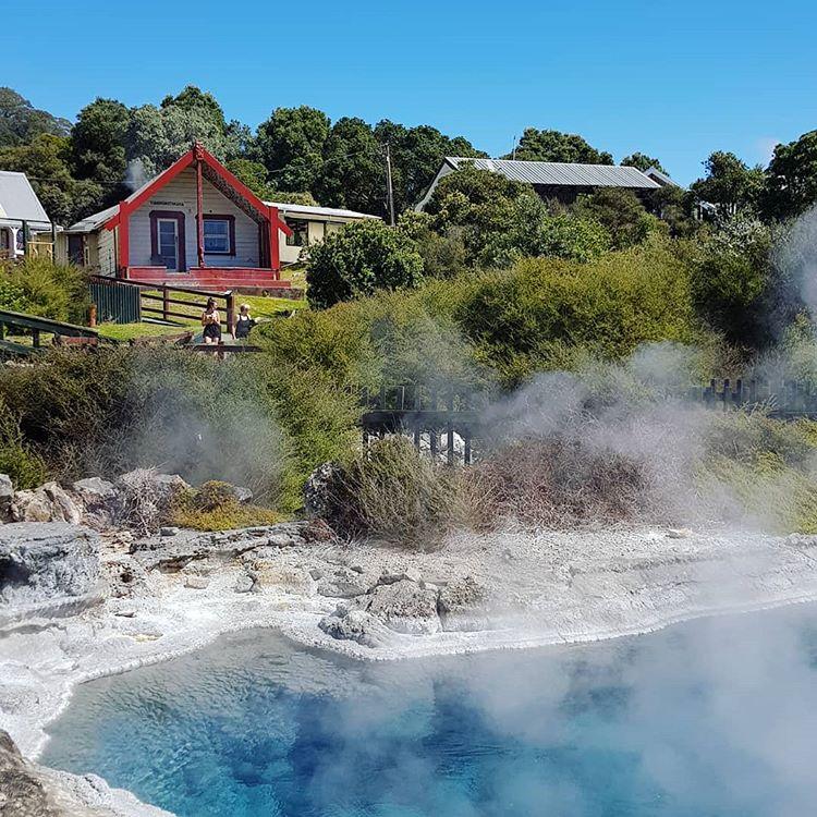 Geothermal pools at Whakarewarewa Maori Village