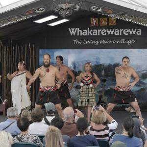 Whakarewarewa-38