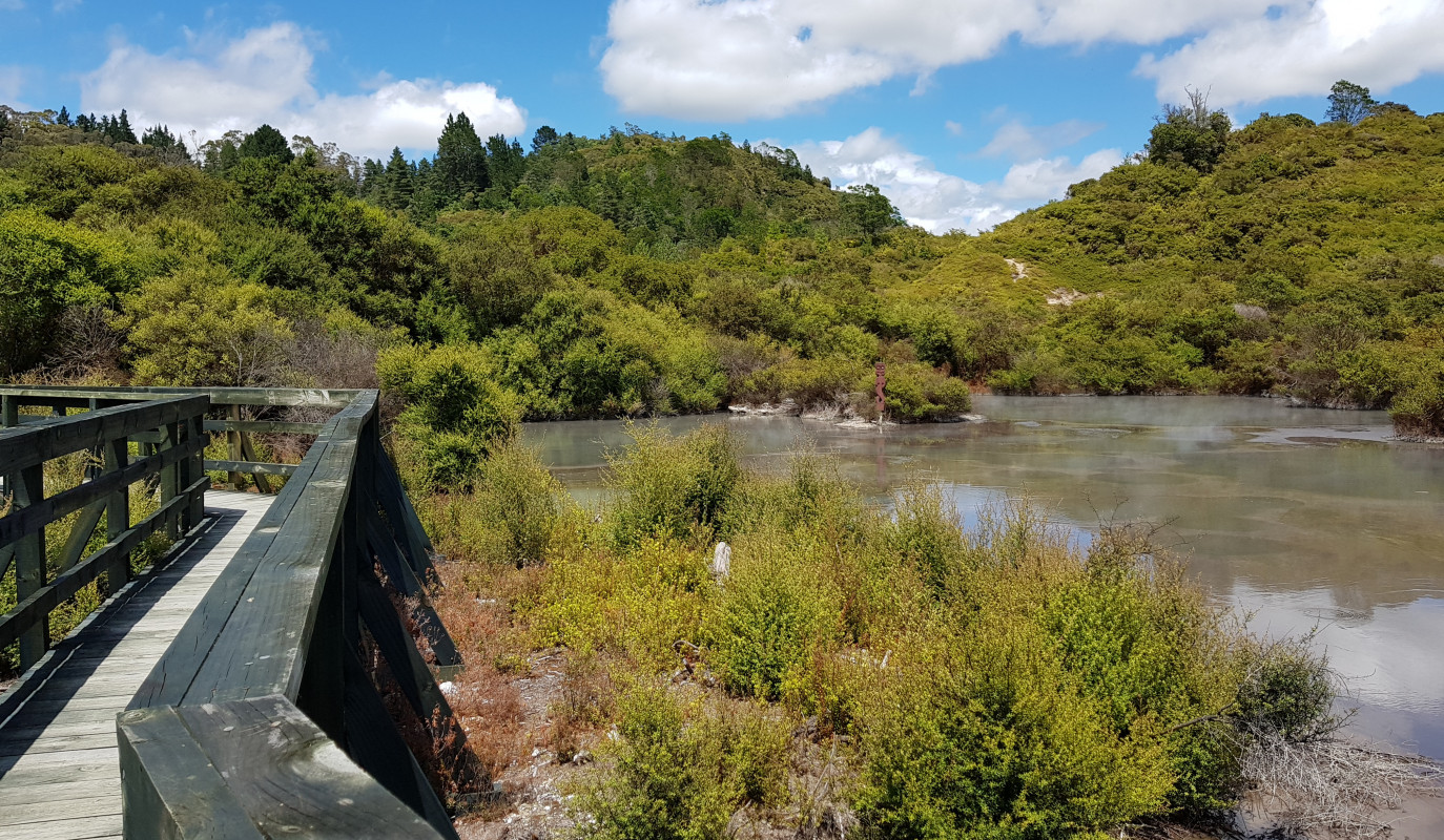 Rotorua's best walking tracks for families to explore